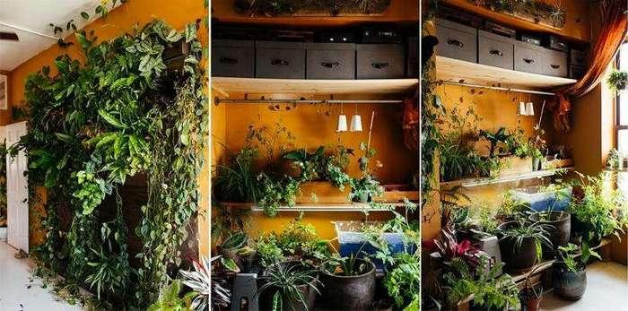 Cупермодель, выращивающая 500 растений в своей квартире