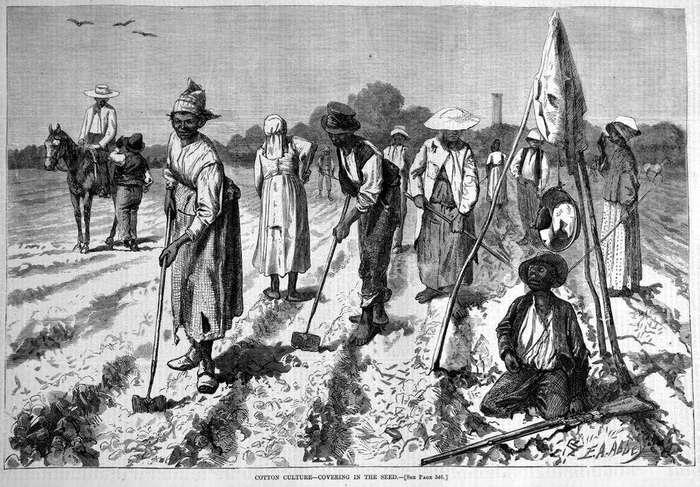 Правдивые и ложные факты о рабстве в США