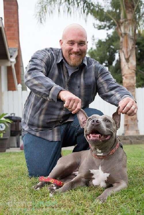 Бездомная собака едва не попала под машину, но вмешался счастливый случай
