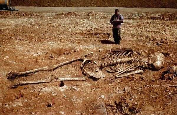 Существовала ли на Земле раса гигантов?
