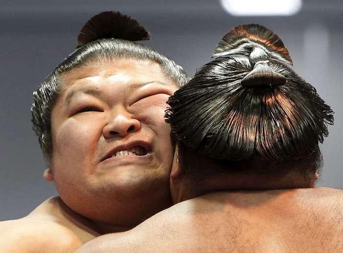 Турнир по сумо в Токио