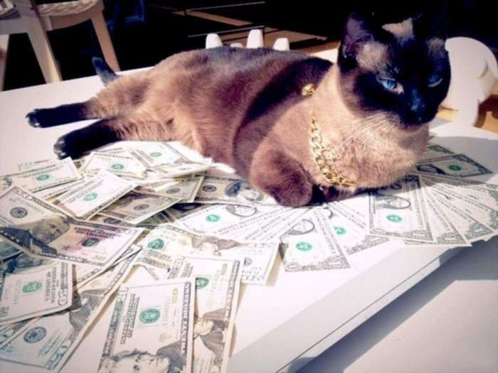 «И налоги верните». Минфин предлагает россиянам с доходами от 50 тысяч рублей самим копить на пенсию