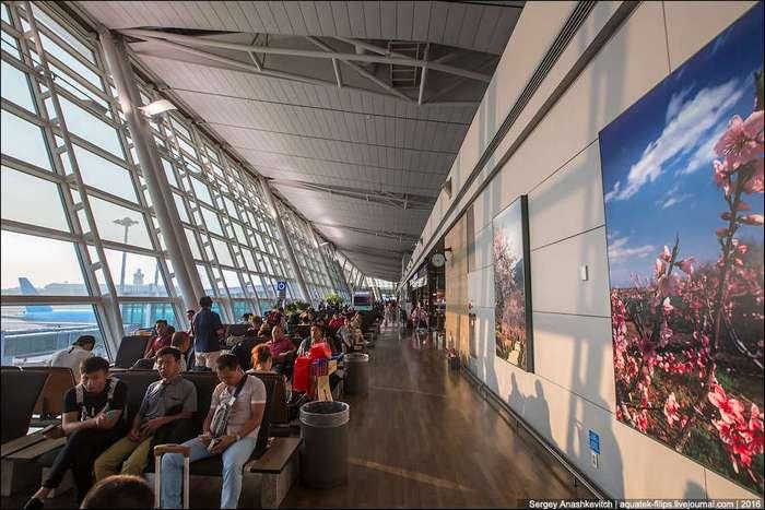 Один из самых крутых аэропортов мира