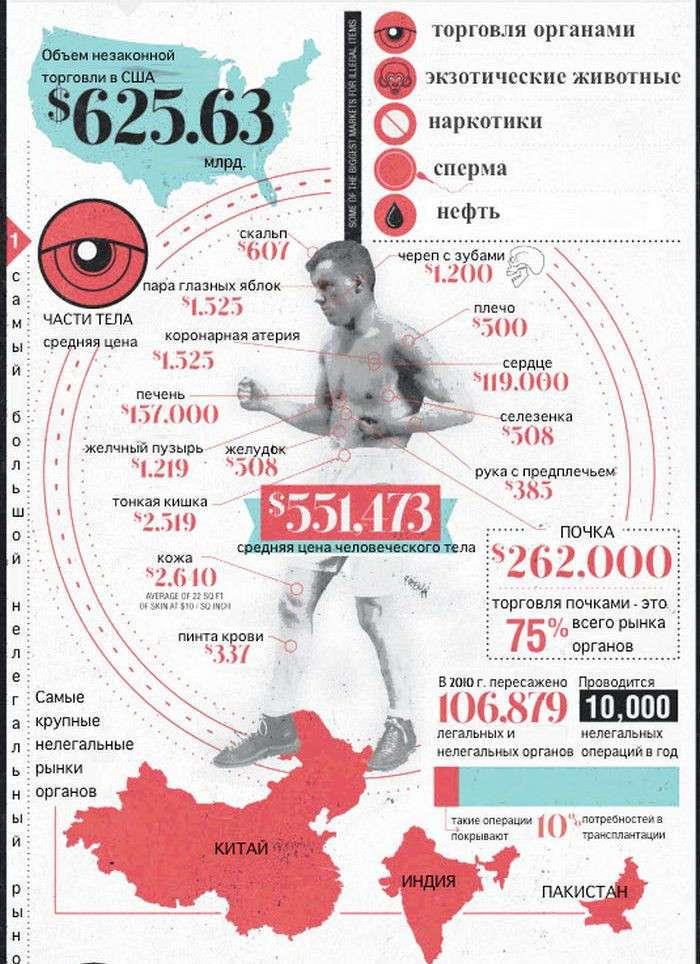 Черный рынок органов. А сколько стоит ваше тело?