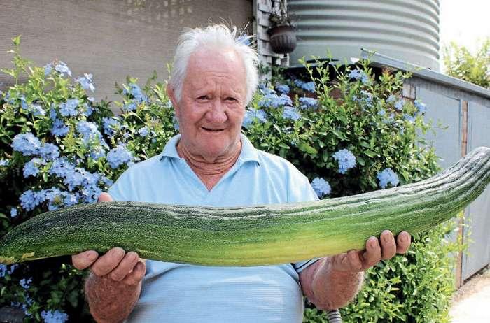 Овощи-гиганты