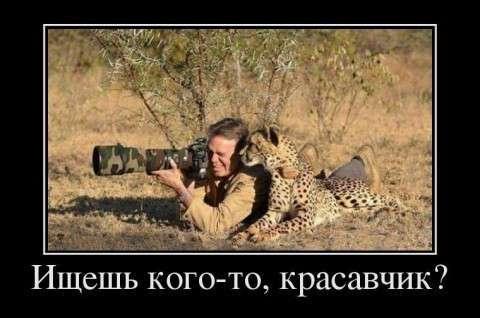 Убойные картинки