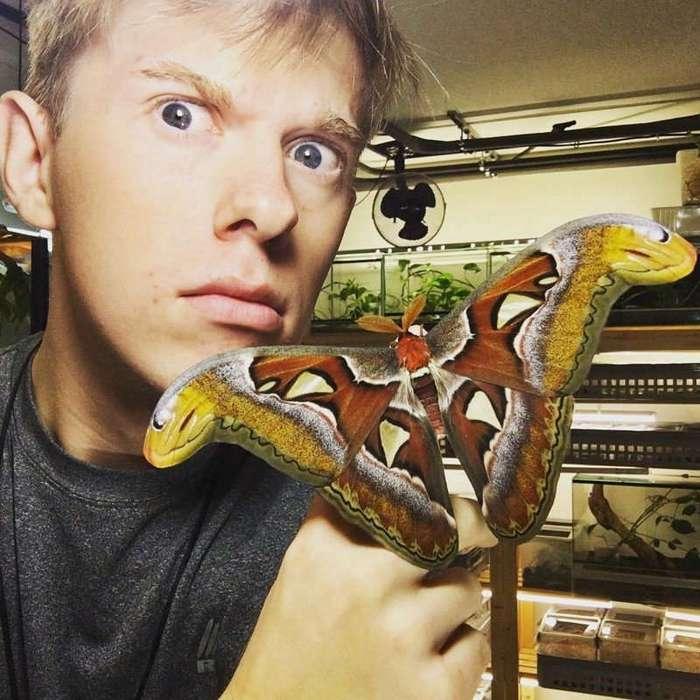 Впечатляющая коллекция одного из крупнейших в Европе заводчиков насекомых
