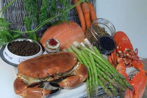 Самый дорогой кошачий корм в мире содержит омаров, крабов и икру