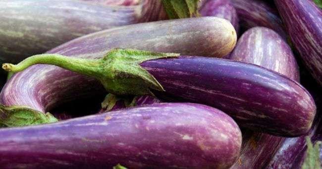 Баклажан, помидор: овощи и фрукты против старения организма