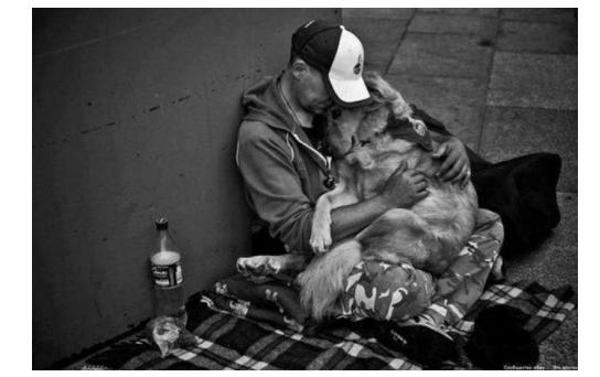 20 фото, которые проникают прямо в сердце
