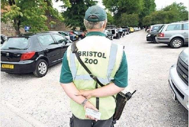 Как парковщик британского зоопарка стал миллионером