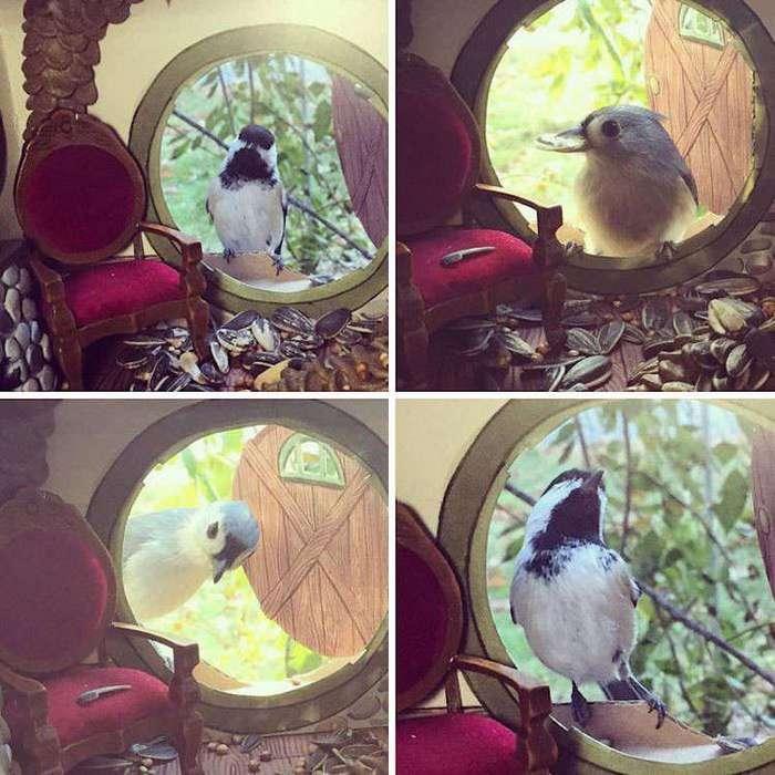 Крошечные птичьи домики-кормушки: внутри как настоящие!