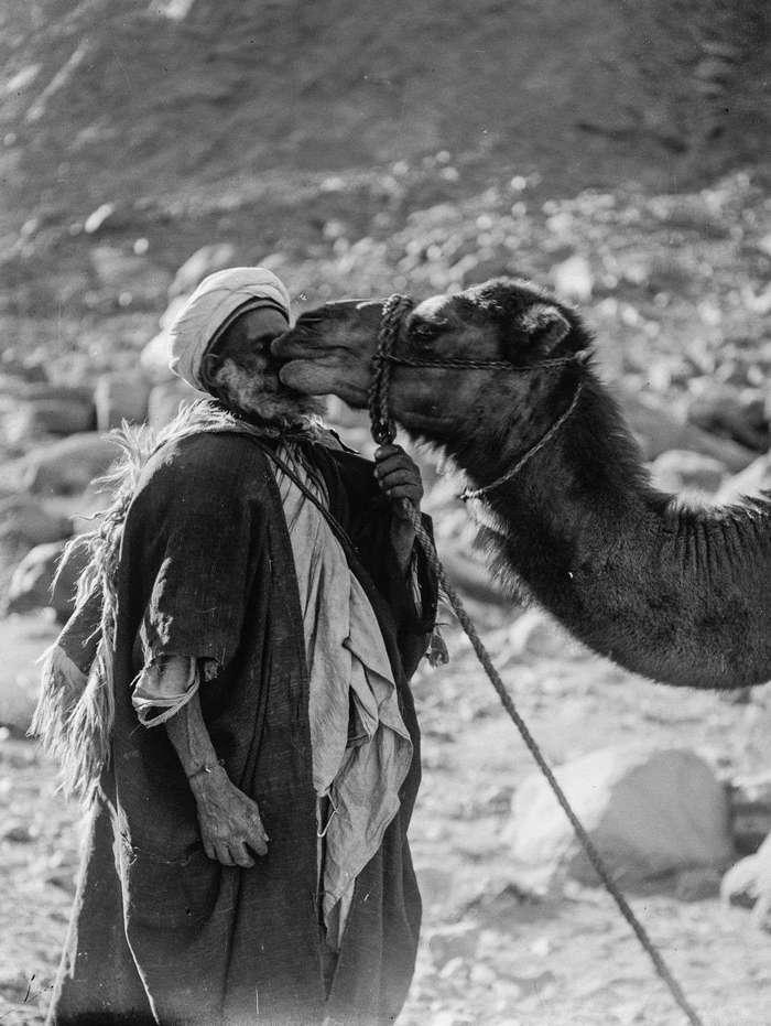 Культура и образ жизни бедуинов в фотографиях, снятых в конце 19 века
