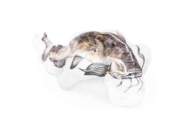Художница превращает обнаженные тела в оптические иллюзии с дикими животными