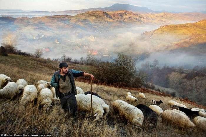 Фотоконкурс Travel Photographer of the Year: кадры, которыми гордился бы любой фотограф