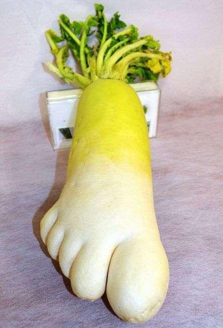 20 фруктов и овощей, на которые хочется взглянуть дважды