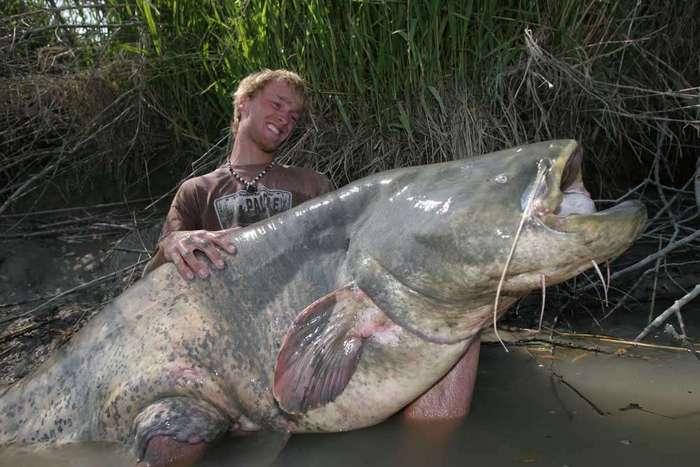 Тот самый момент, когда страшно доставать улов