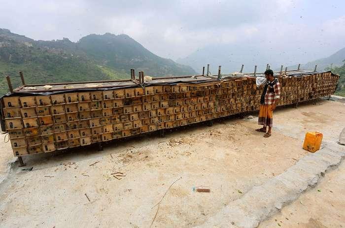 Жизнь в Йеменских горах