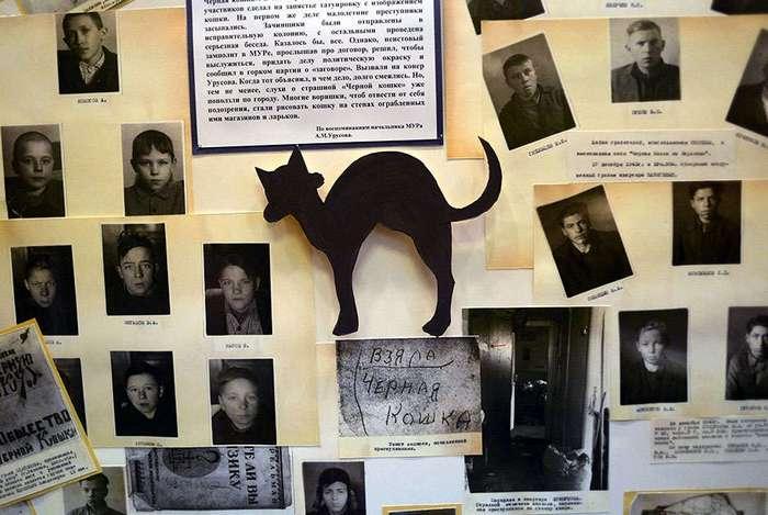 Настоящая история банды «Чёрная кошка»
