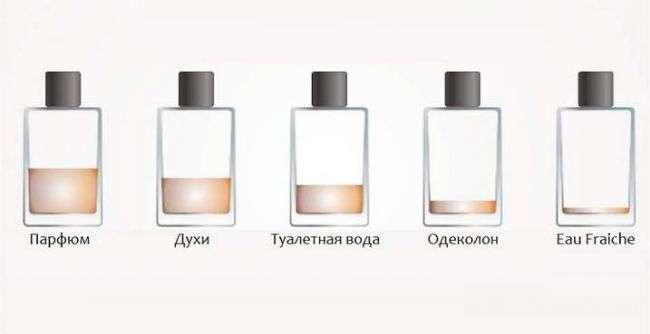 Одеколон, духи, туалетная вода и парфюм — в чем отличия?