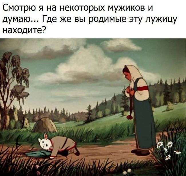 ВЕСЁЛЫЕ КАРТИНКИ