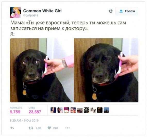 ПЕРЛЫ ОСТРОУМИЯ ПОЛЬЗОВАТЕЛЕЙ МИКРОБЛОГА TWITTER