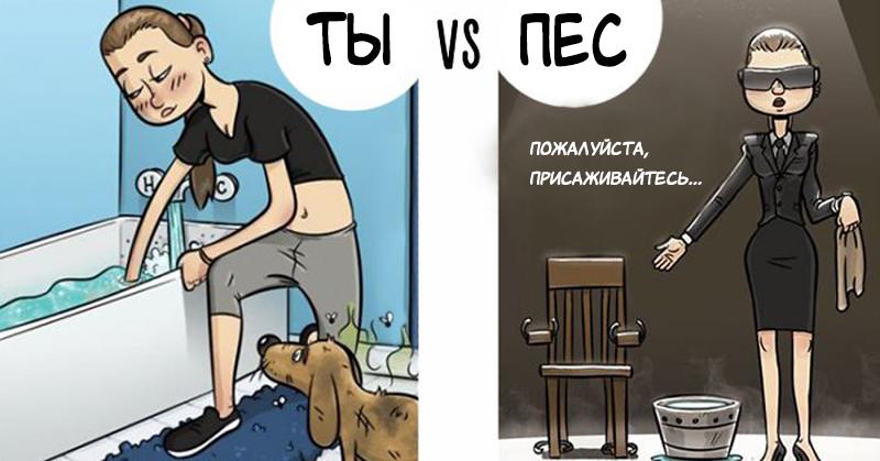 7 иллюстраций, которые демонстрируют, как собаки видят мир