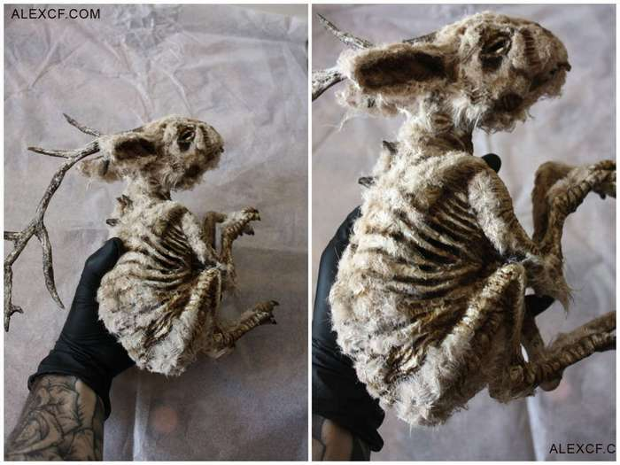 В подвале старого лондонского особняка нашли тела странных существ