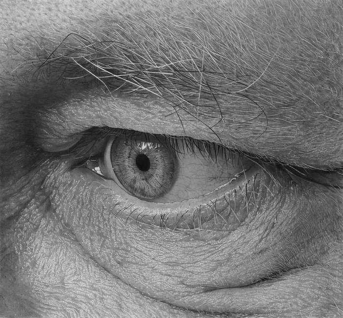Широко открытые глаза: детализированные карандашные рисунки Флавио Апеля