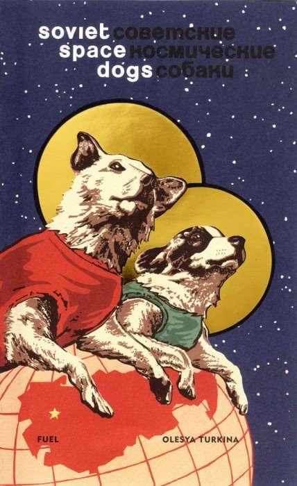 Белка и Стрелка – знаменитые советские собаки, которым досталась слава всех животных-космонавтов