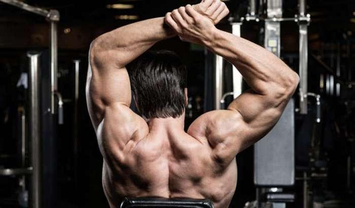 Секреты больших мышц: три способа провести идеальную тренировку