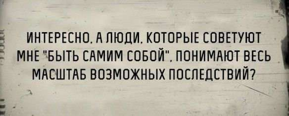 ФОТОПОДБОРКА СРЕДЫ