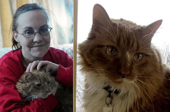 Эти героические коты спасли жизнь своим хозяевам