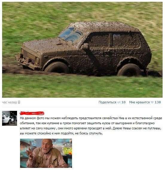 Смешные комментарии из соц. сетей