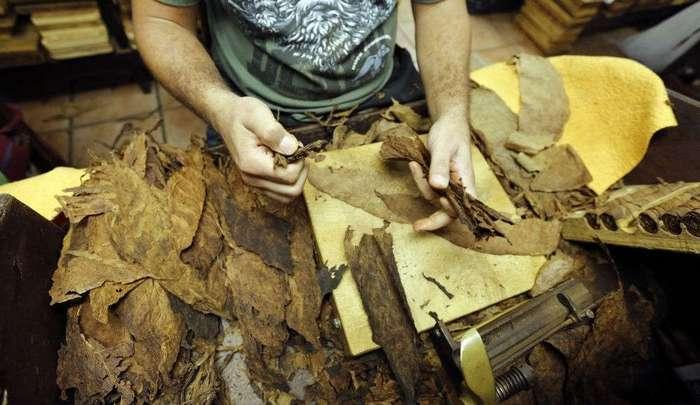 О легендарных Кубинских сигарах