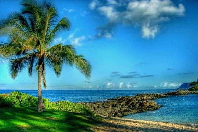 О том, как США аннексировали Гавайи