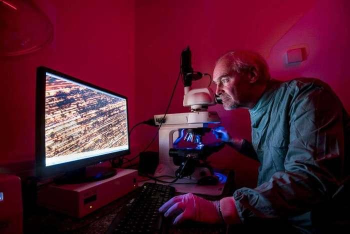 Медь предотвращает распространение вирусов - новейшие исследования