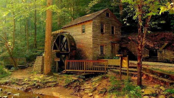 30 домиков в лесу, после которых вам захочется уехать из города
