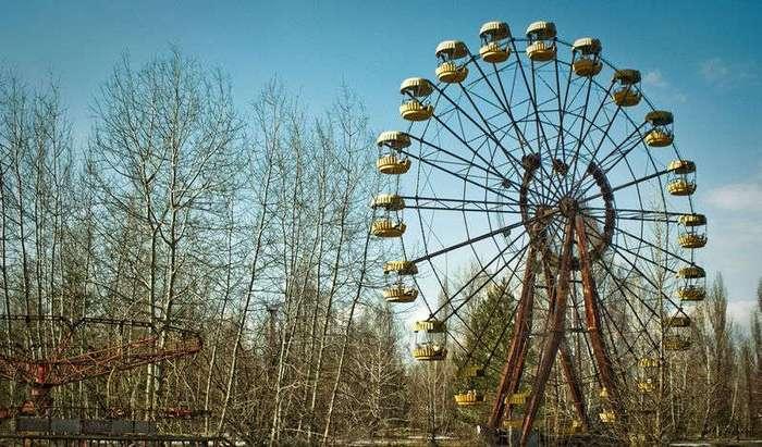 Ядерная корзина: что растет в Чернобыле