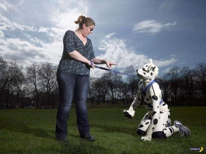 Люди-собаки