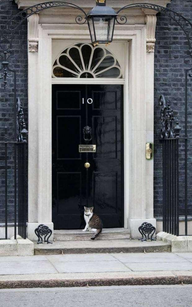 Лучшие снимки марта от фотографов издания The Telegraph