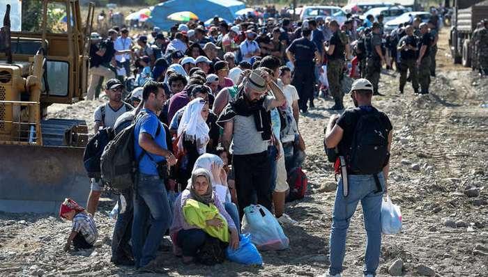 Миграционный кризис в фактах и цифрах