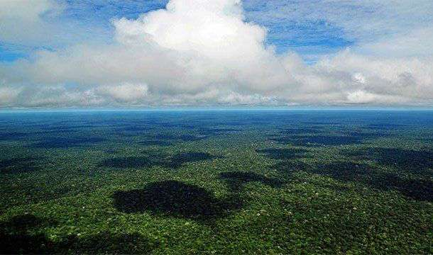 Невероятные факты про Амазонку, которые делают её уникальнейшим местом на Земле