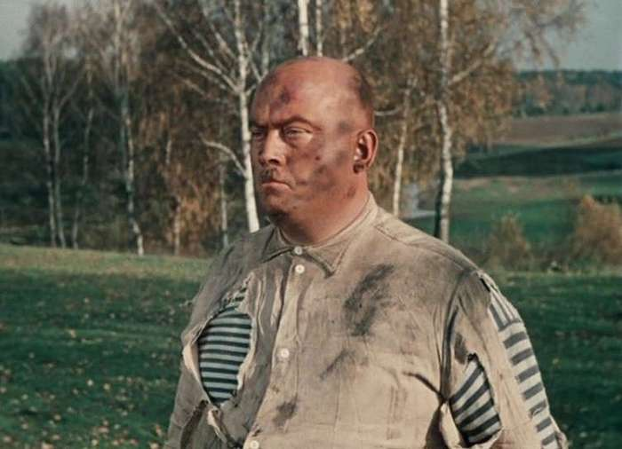 Незабываемые кадры из фильмов Леонида Гайдая. Незабываемые артисты