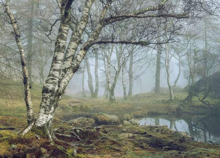 Пейзажный фотограф года: прекрасные виды Британии