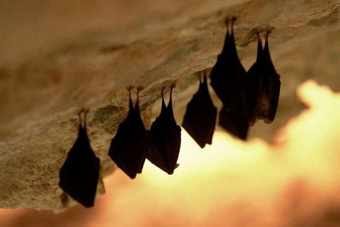 Пещеры и подземелья