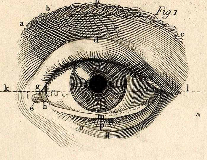 Почему люди боятся смотреть в глаза