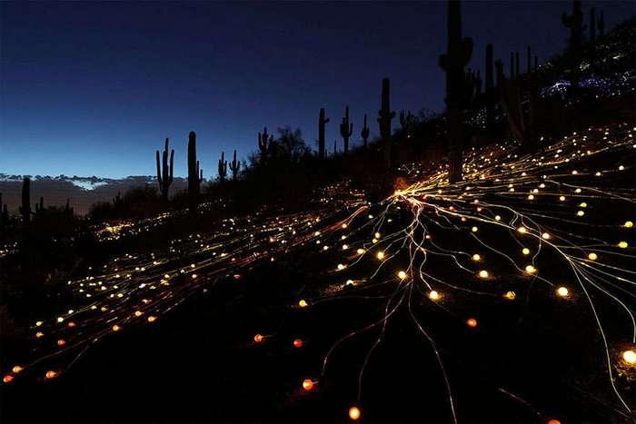 Поле света в австралийской пустыне