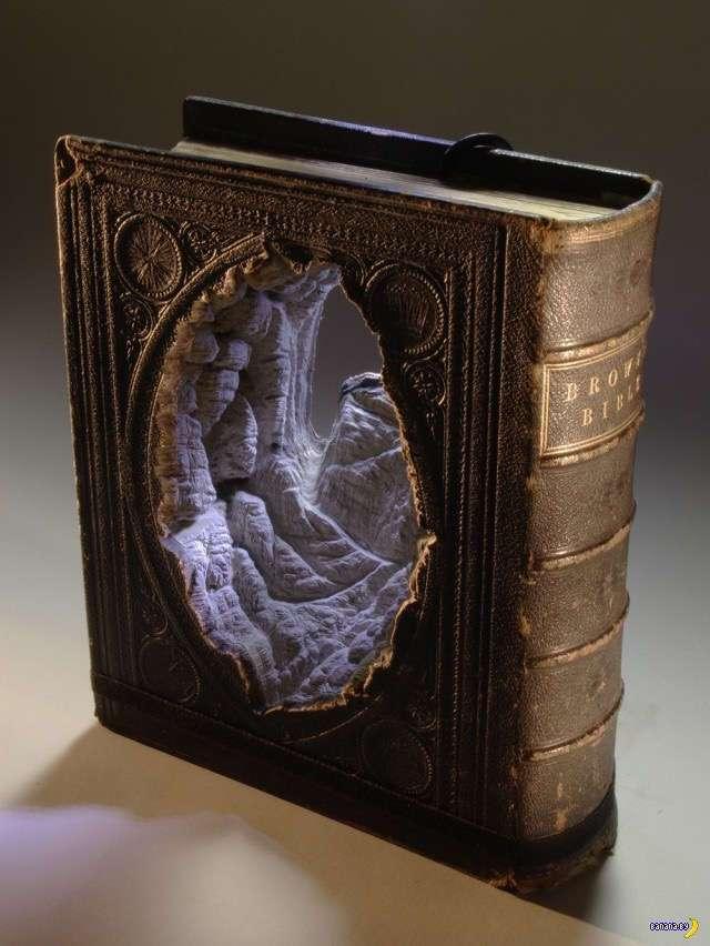 Прикольные картинки - 1599