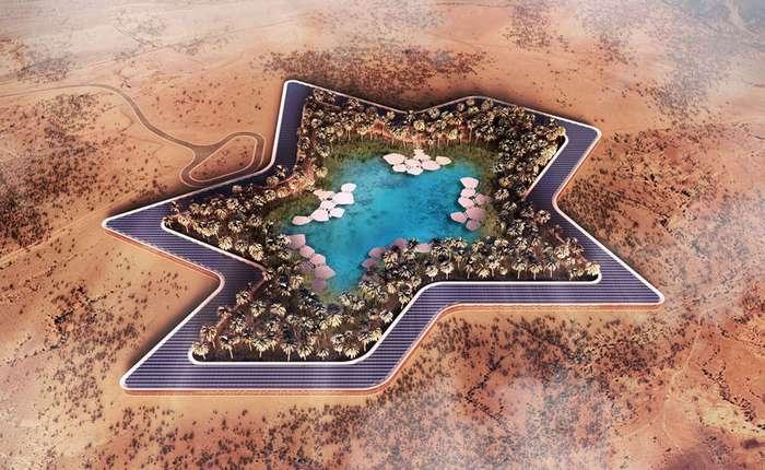 Пустынное чудо: самая зеленая точка планеты появится в Абу-Даби